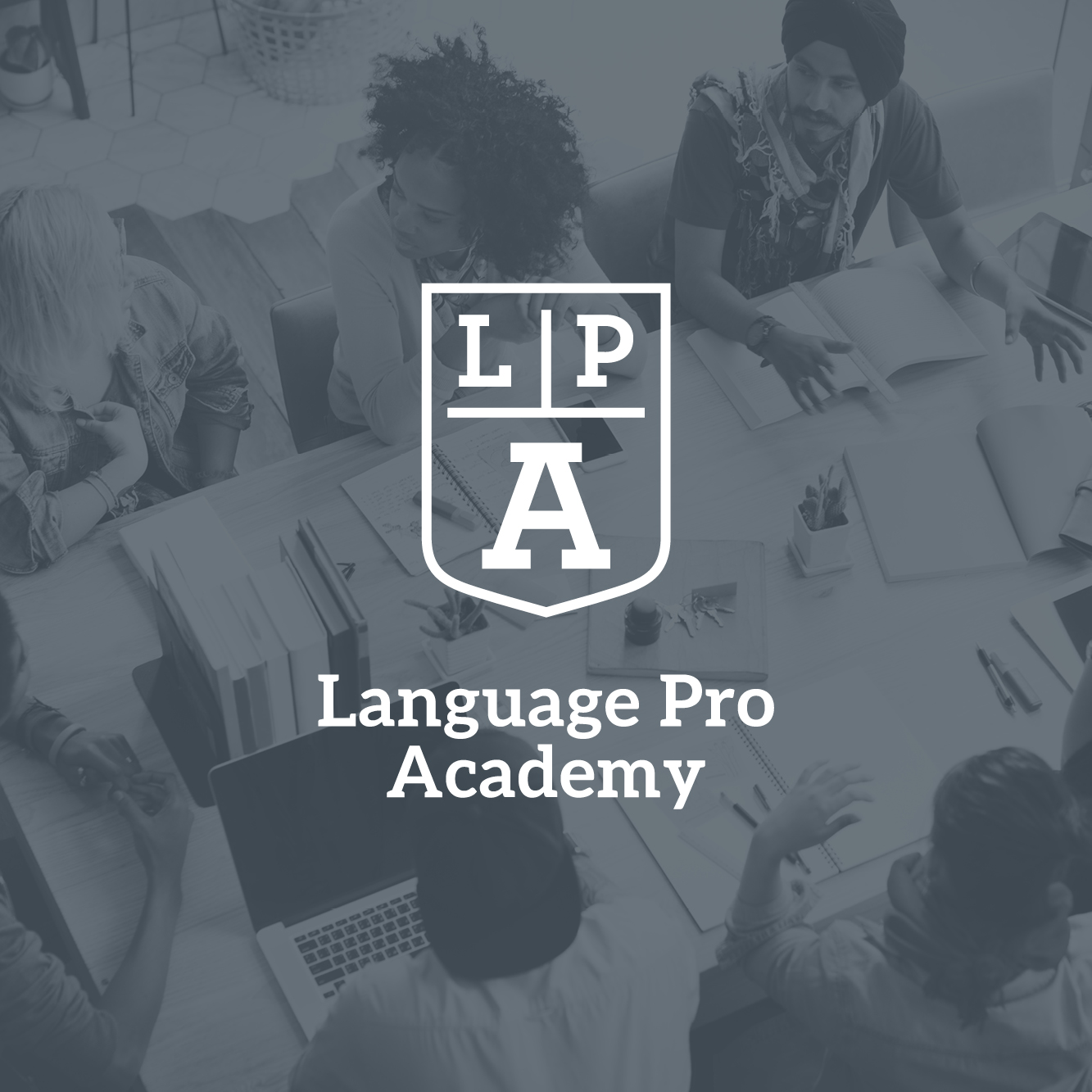 Language Pro Academy